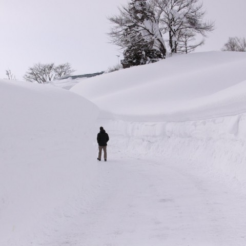 James walking in Myoko.jpg